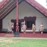 Maori show