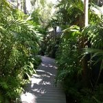 walkway to our cottage