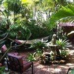 another hidden oasis..love the hammock