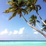 Spiaggia a 2 passi dalla guest house (unica per turististi sull'isola)
