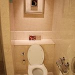 Water Closet in the Bathroom