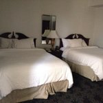 Room 537