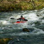 White Water Kayaking nearby