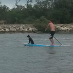 Surfing buddy