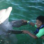 Mi hijo Mauricio bailando con el delfin