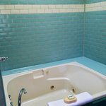 Guest Room #5 Jetted Tub with skylight
