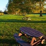 picnic area between the vineyards