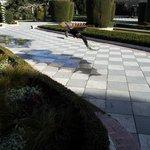Jardine de Cecilio Rodriquez