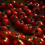 Tomatoes from Eataly Chelsea, NYC - A lesson in gravitating toward what draws you.