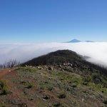 Über den Wolken, Blick auf den Teide/ Teneriffa