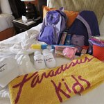Some of the goodies for kids in Family Concierge