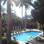 le parc et la piscine