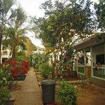 giardino e bungalows