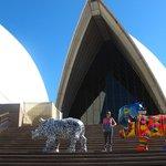 Sydney art on display at the Opera House
