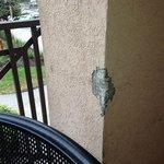 Broken stucco on patio