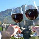 Monterey Guided Wine Tours