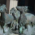 Mustangs of Los Colinas. Just beautiful.