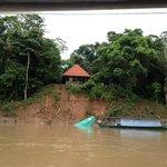 Vista del banco de Tambopata