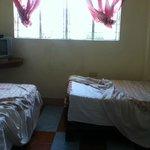 Twin Bed fan room