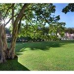 Lush Garden Estate