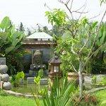 Jardin et plan d'eau