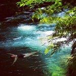 Jen enjoying the river - photo Michael Blamey Photography