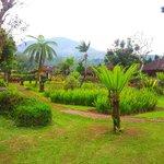 garden at Enjung Beji