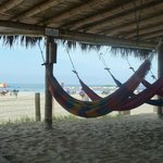 Hamacas con vista a la playa