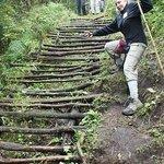 Climbing in Mgahinga Nat Park to see Golden Monkeys