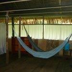 Lodge Principal Habitacion 16: Zona de hamacas