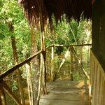 Lodge Principal Habitacion 16: Vista