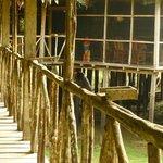 Lodge Principal Habitacion 16: Vista hacia sala