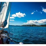 Bay of Islands sailing