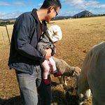 Meeting Charlie the lamb