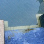 Missing tiles on steps from pool access room. Yellowish water.