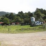 Terra Viva farm