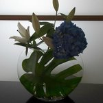 Stylish flowers in room
