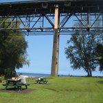 Bridge above park