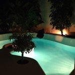 Garden @night
