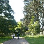 Muchos árboles alrededor, propiedad privada de enfrente