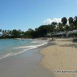 Beach (facing east)