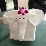 Elephant Towel to greet us in room