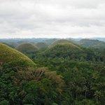 Chocolate Hills Sightseeing