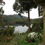 Reflections from Lake Rosebery
