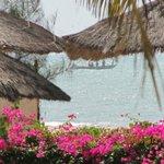 Photo of Laguna Beach
