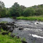 Walks along the River