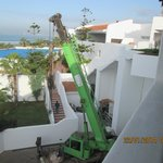 The crane next day