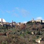 Tuscan Beauty