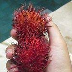 Tropical fruit compliment