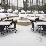 Hilton Garden Inn Raleigh-Durham Airport Foto